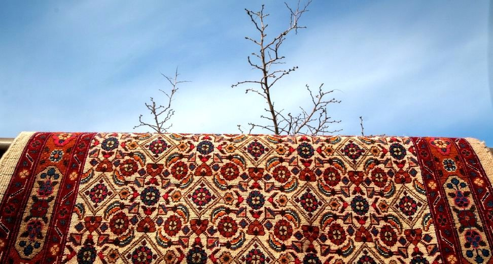 بهترین قالیشویی